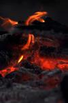 Firedsc_4108