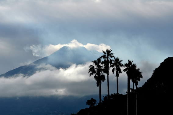 Sakurajimadscn