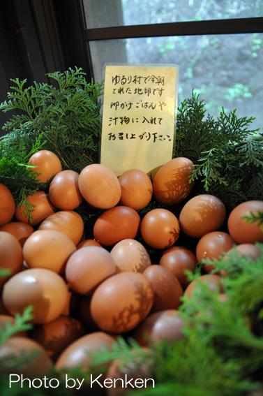 Eggdsc_2394n