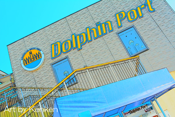 Dolphindsc_1249n
