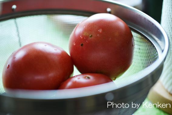 Tomatodsc_7996n